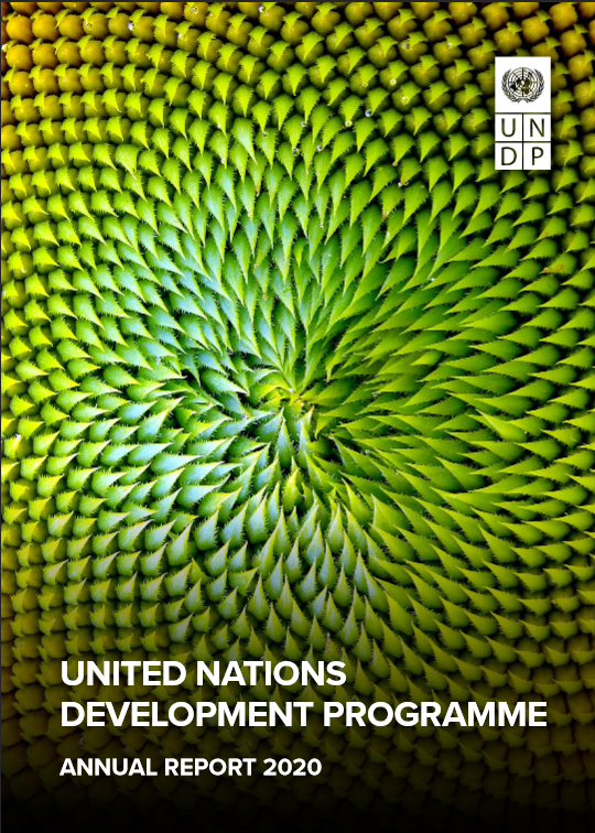 United Nations Development Programme Annual Report 2020