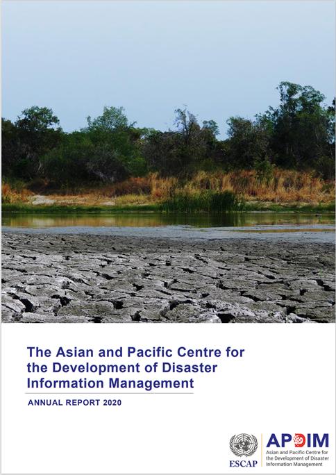 APDIM Annual Report 2020